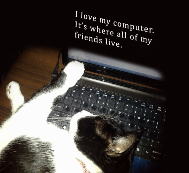 "Picture of cat lying on a computer. Words on computer screen read, ""I love my computer, it's where all of my friends live."""