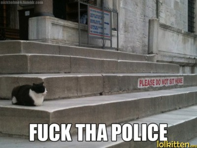 "Picture of a cat sitting on some cement stairs. Stairs have a sign that reads ""Please do not sit on stairs"" Picture has a caption ""Fuck tha police."" (misspellings intentional)"