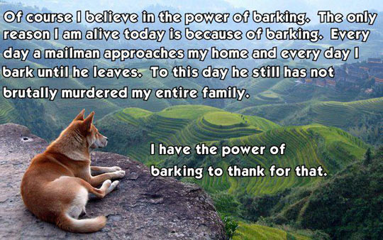 """A picture with a dog overlooking a field with the words, """"Of course I believe in the power of barking. The only reason I'm alive today is because of barking. Every day a mailman approaches my home and I bark until he leaves. To this day, he still has not brutally murdered my entire family. I have the power of barking to thank for that."""""""