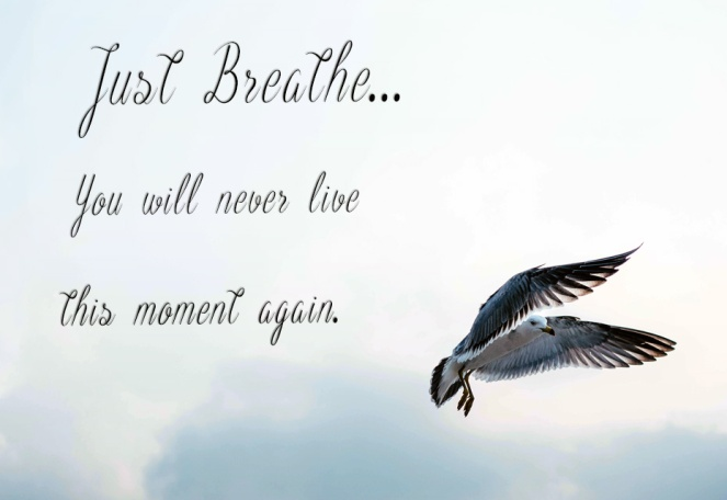 bird in the sky with the motto: Just breathe, you will never live this moment again.