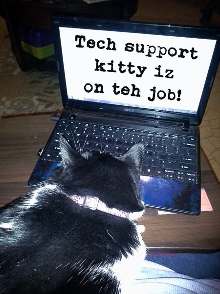 "Picture of a cat sitting in front of a laptop with the text ""Tech support kitty iz on teh job!"""